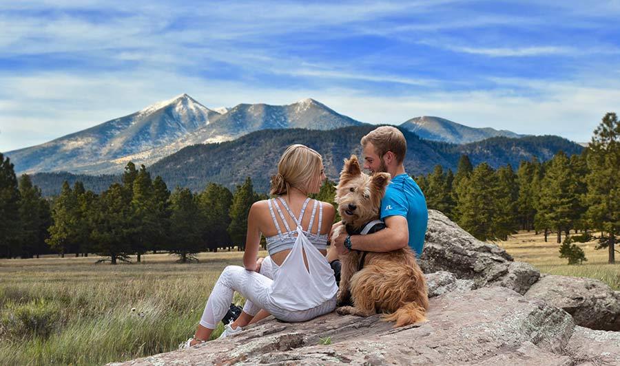 Schöne Wanderwege locken bei Flagstaff