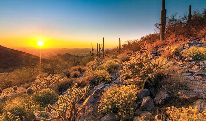 Arizona auf bequeme Art