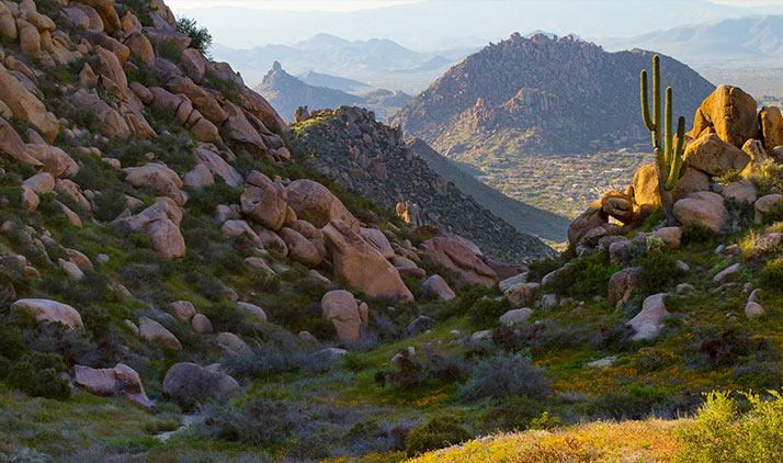 Tom's Thumb Trail in Scottsdales McDowell Sonoran Preserve