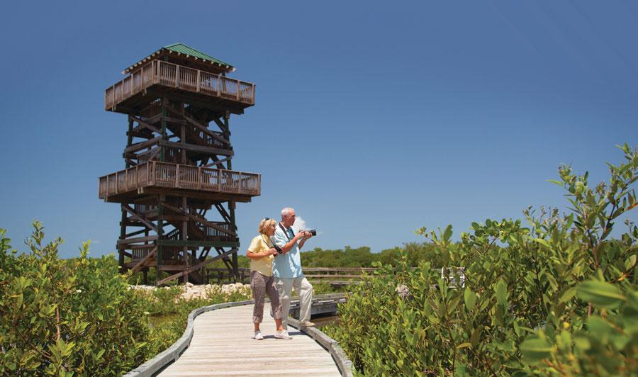 Robinson Preserve mit Aussichtsturm