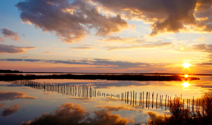Blackwater National Wildlife Refuge, Maryland