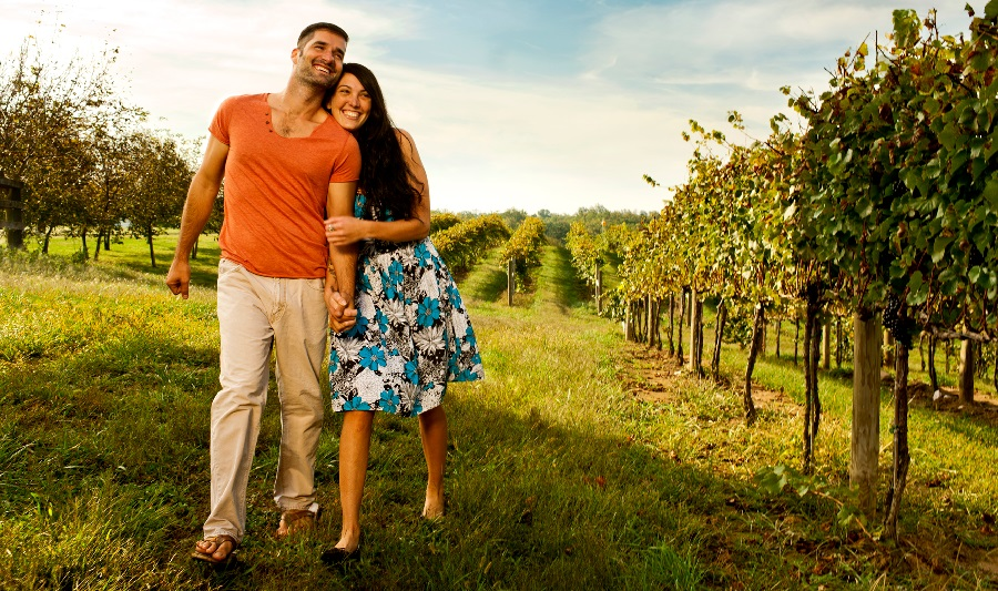 Loudoun County - D.C.'s Wine Country
