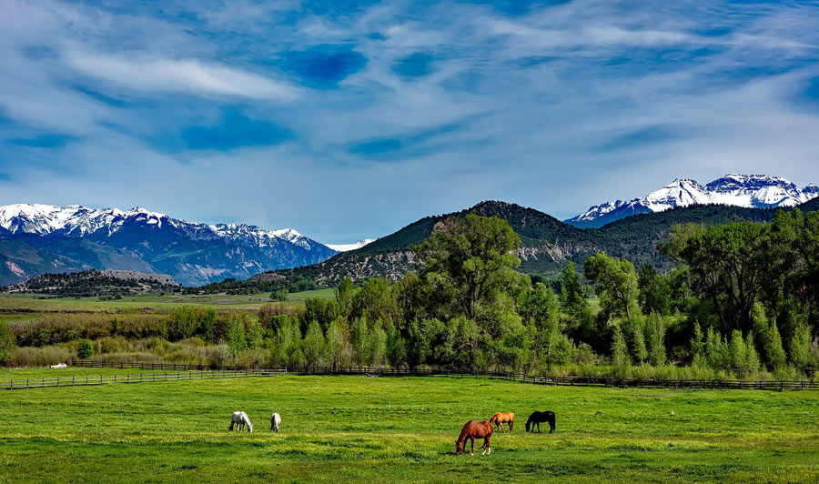 Ranch nahe den Rocky Mountains