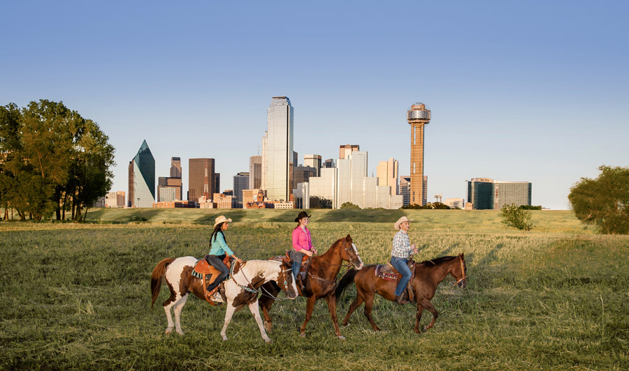 Cowboy-Metropole Dallas