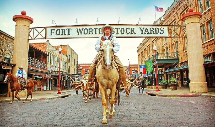 Viehtrieb: Fort Worth Stockyards