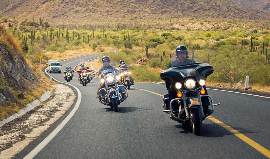 Fahrt durch die Wüste Baja Californias