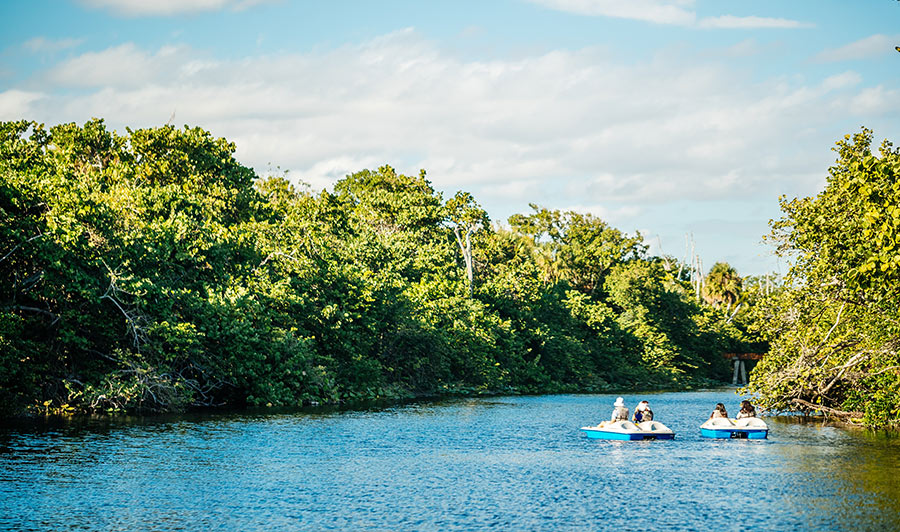 Natur pur: Hugh Taylor Birch State Park in Fort Lauderdale