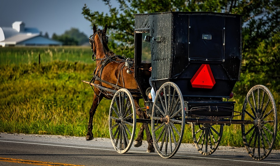 Amish in traditioneller Kutsche