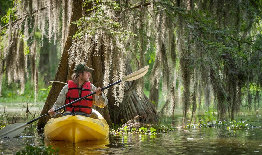 Kisatchie National Forest, Louisiana | Naturparadies Louisiana