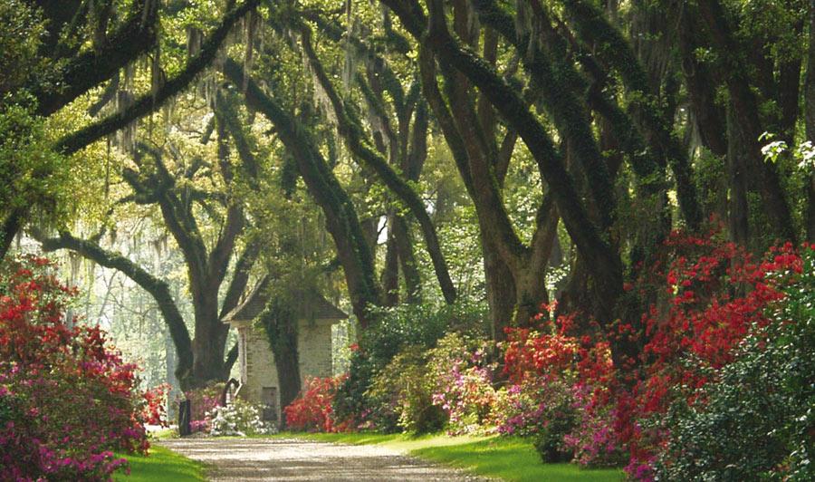 Über Ferriday nach St. Francisville | Malerisches St. Francisville, Louisiana