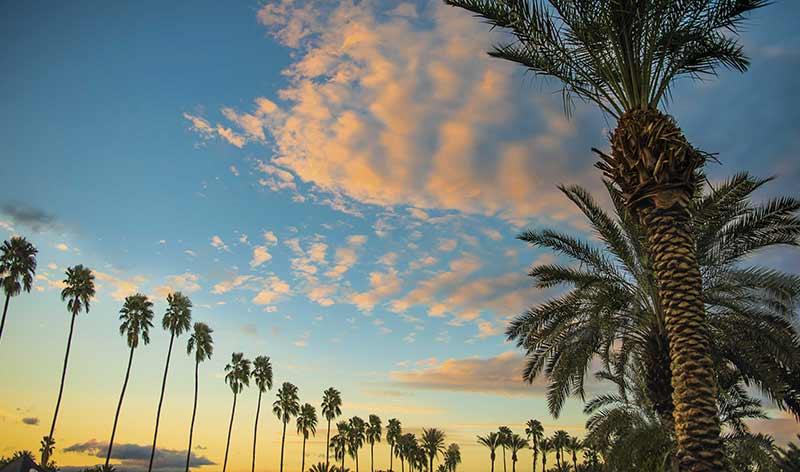 Sonnenuntergang in der Wüstenoase: Palm Springs