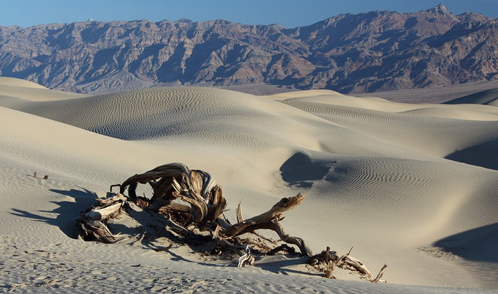 Death Valley | Death Valley