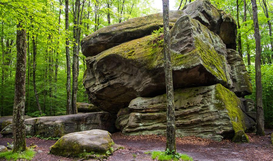 Allegany State Park: Thunder Rocks Area