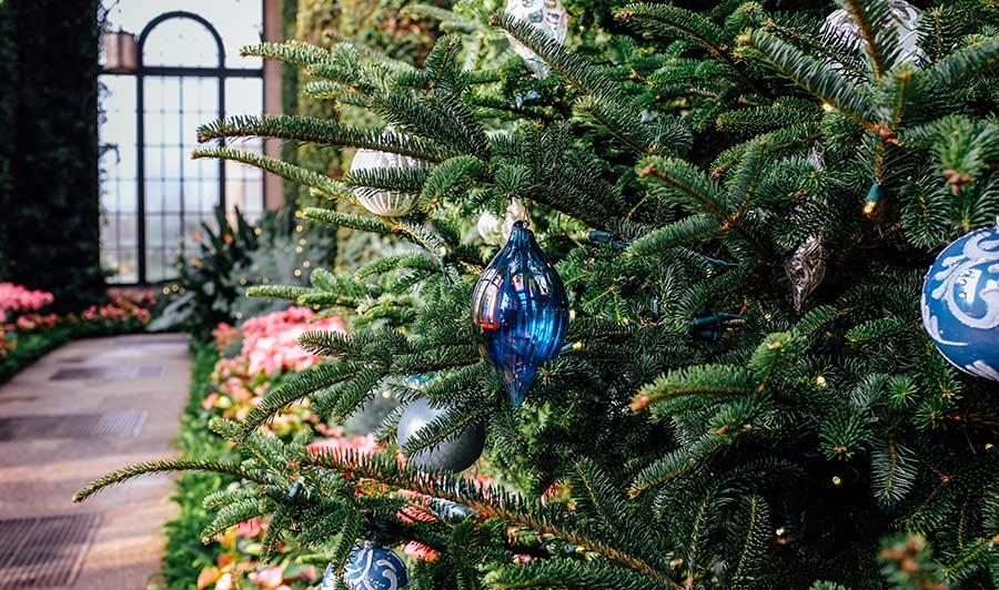 Weihnachten in den Longwood Gardens