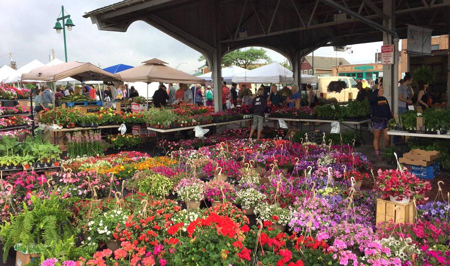 Bunter Bauernmarkt in Rochester