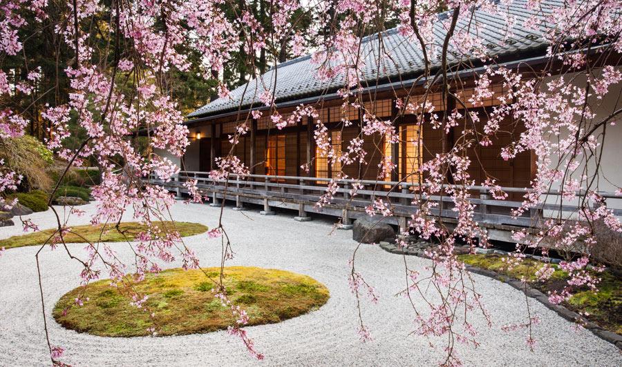Malerisch im Frühjahr: japanischer & chinesischer Garten in Portland