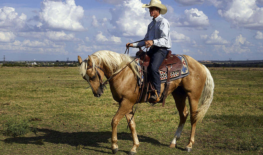 texanischer Cowboy