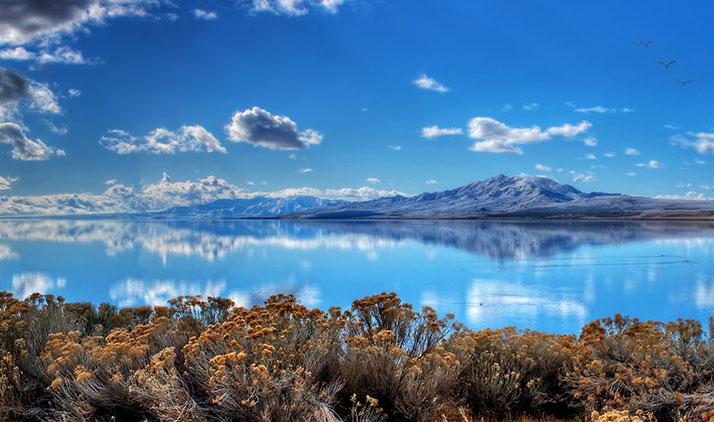 Antelope Island bei Salt Lake City: Perfekt fürs Stargazing, aber auch tagsüber zur Vogel- und Bisonbeobachtung