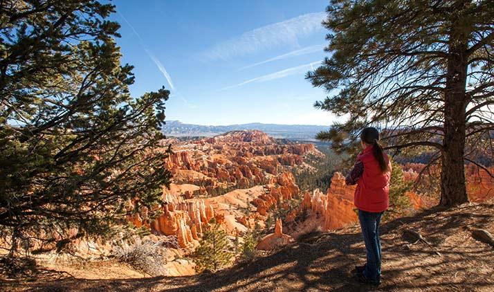 Wandern und staunen: der Bryce Canyon Nationalpark