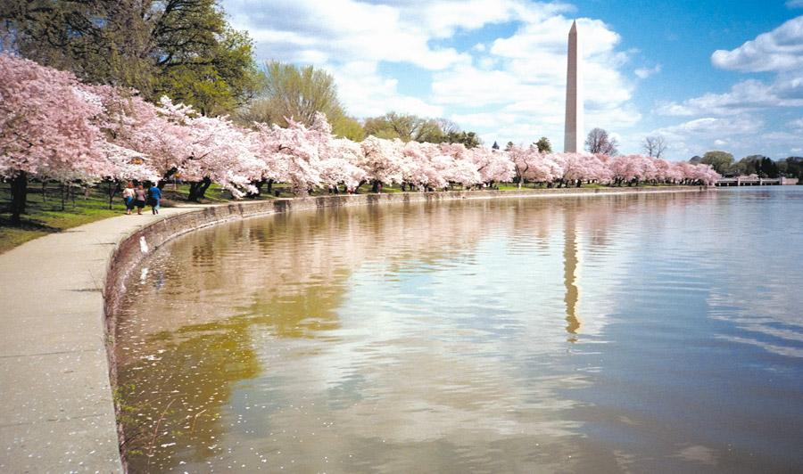 National World War II Memorial & Washington Monument | Washington Monument