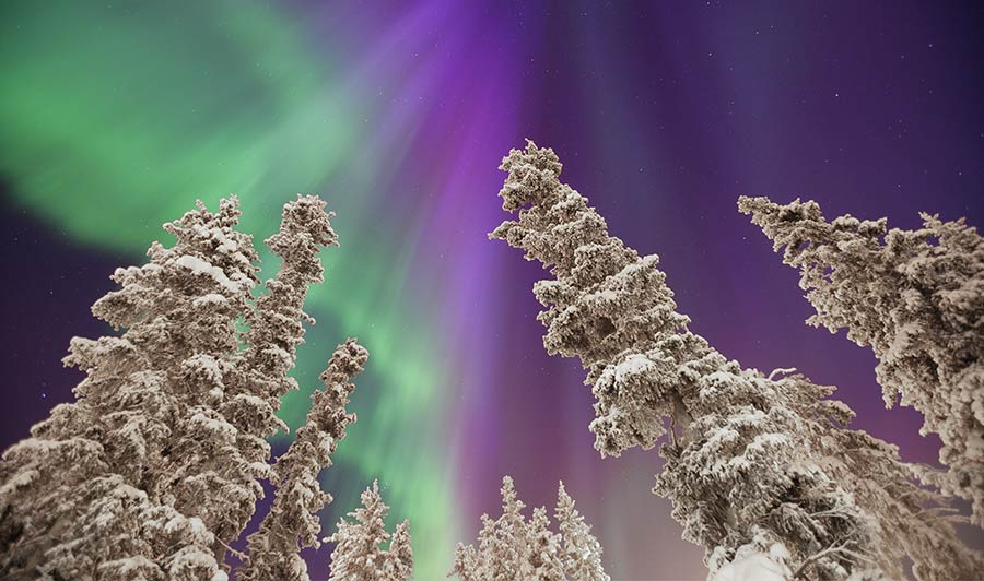 Nordlichter im Yukon