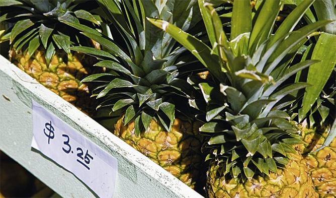 Produktbild Exotisches Hawaii