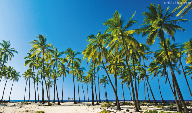 Produktbild Hawaii für Abenteurer