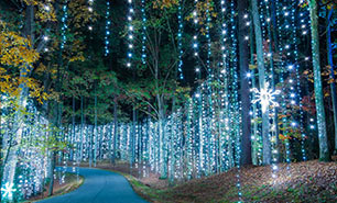 Fantasy In Lights at Callaway Resort & Gardens