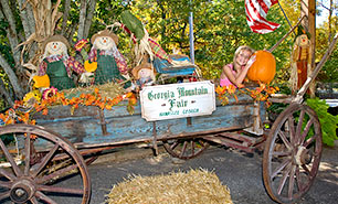 Georgia Mountain Fall Festival